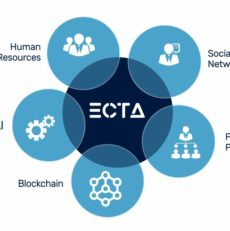 Digitalizacija podjetij dravinjske doline – platforma ECTA
